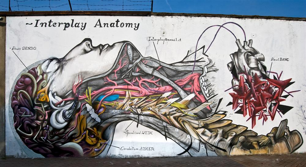 By Asker, Senso, Weik and Banc