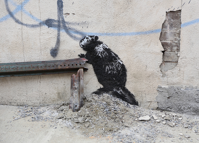 Banksy. Photo by carnagenyc.