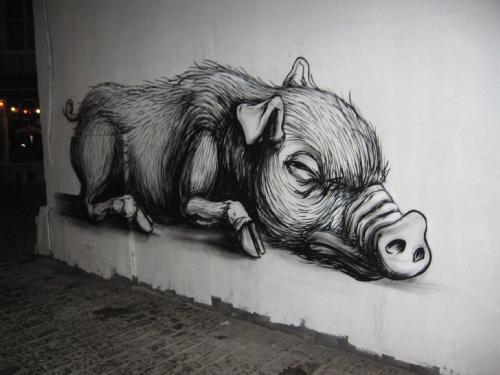 Roa Pig