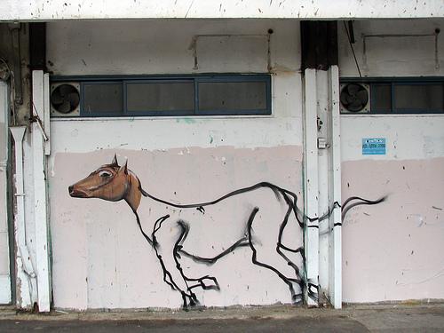 Klone Horse