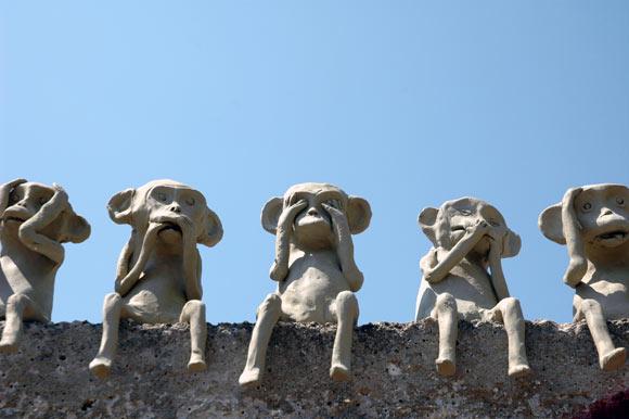 blog-scimmie