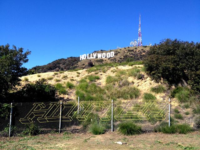 hollywoodxHOTTEA