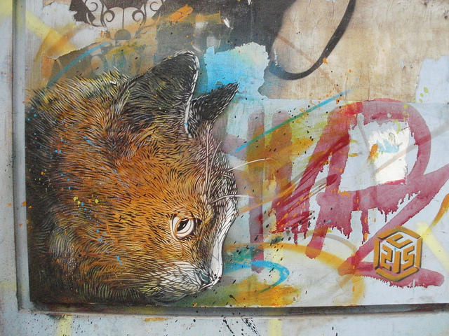 C215. Photo by Feral78.