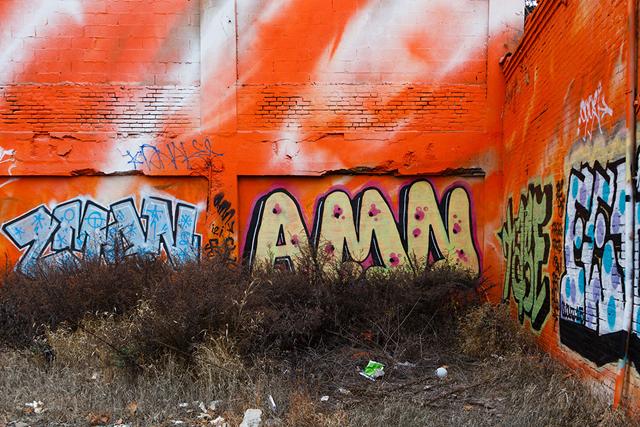 Snak, Zman, AMN, and others over psychylustro. January, 2016. Photo by Steve Weinik.