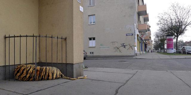 Toni Spyra in Vienna. Photo found on Ekosystem.